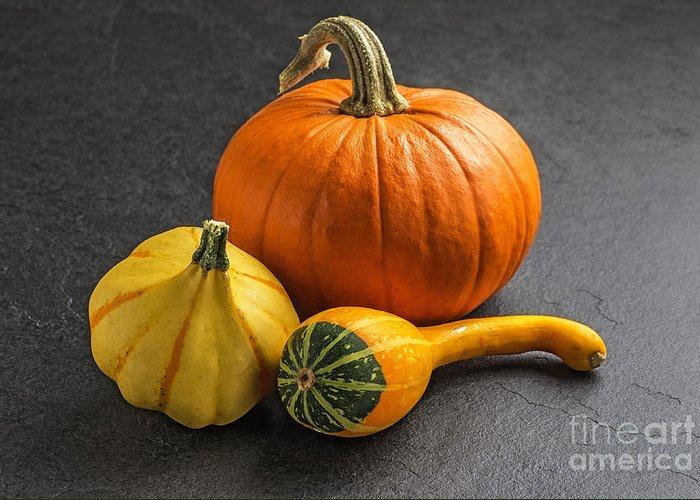 Pumpkin Greeting Card featuring the photograph Pumpkins On A Slate Plate by Palatia Photo
