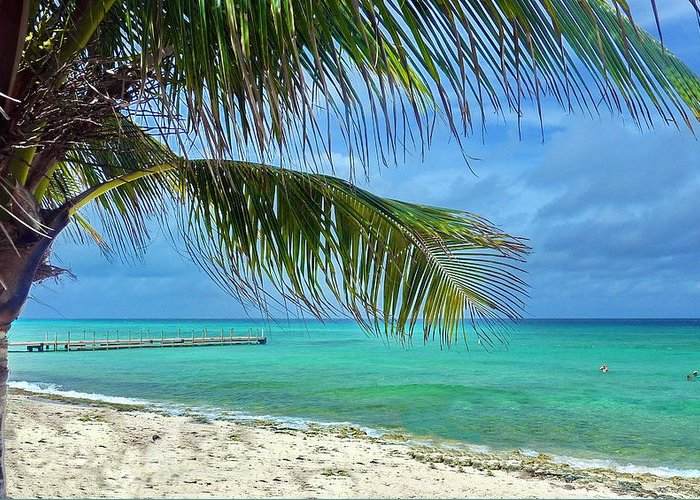 Sky Greeting Card featuring the photograph Punta Cana Getaway by Tony Ambrosio