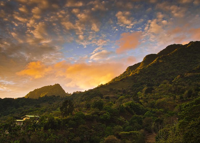 Jungle Greeting Card featuring the photograph Pura Vida Costa Rica by Aaron Bedell