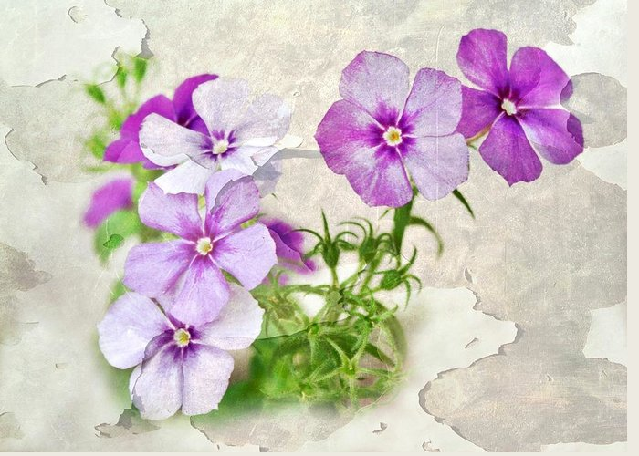 Purple Flowers Greeting Card featuring the photograph Purple Beauties by Cathie Tyler