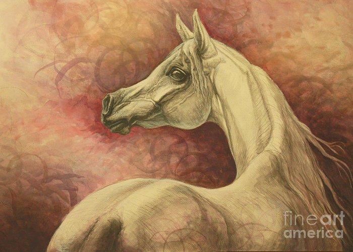 Arabian Horse Greeting Cards