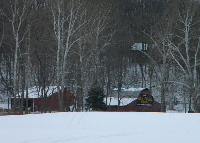 Snow Greeting Card featuring the photograph Putnam County Farm in Winter by Helen ONeal