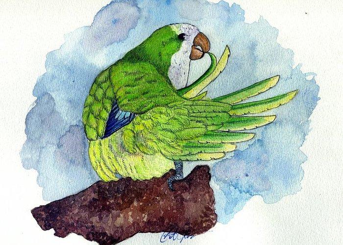 Quaker Parakeet Bird Portrait  Greeting Card featuring the painting Quaker Parakeet Bird Portrait  by Olde Time Mercantile