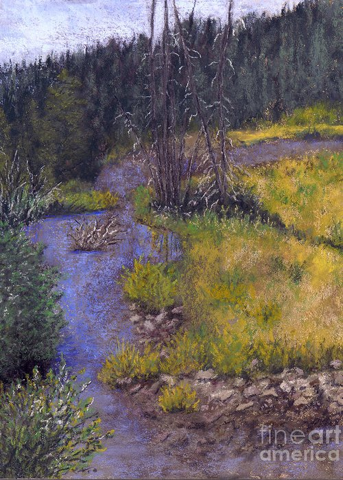Creek Greeting Card featuring the painting Quiet Creek by Ginny Neece