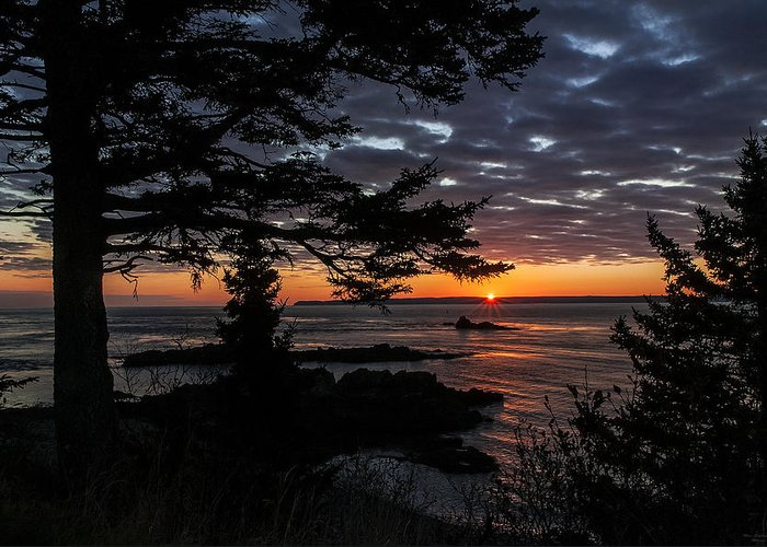 Quoddy Head State Park Greeting Card featuring the photograph Quoddy Sunrise by Marty Saccone