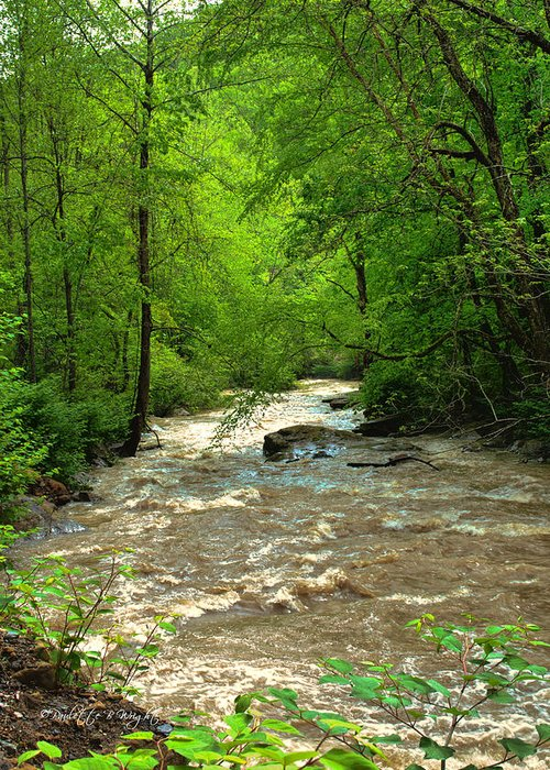 Featured Art Greeting Card featuring the photograph Raging Waters - West Virginia Backroad by Paulette B Wright