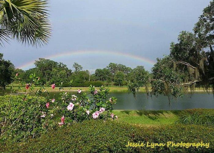 Rainbow Greeting Card featuring the photograph Rainbow by Jessie Lynn