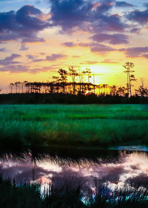 Rainbow Greeting Card featuring the photograph Rainbow Morning Marsh by Paula OMalley