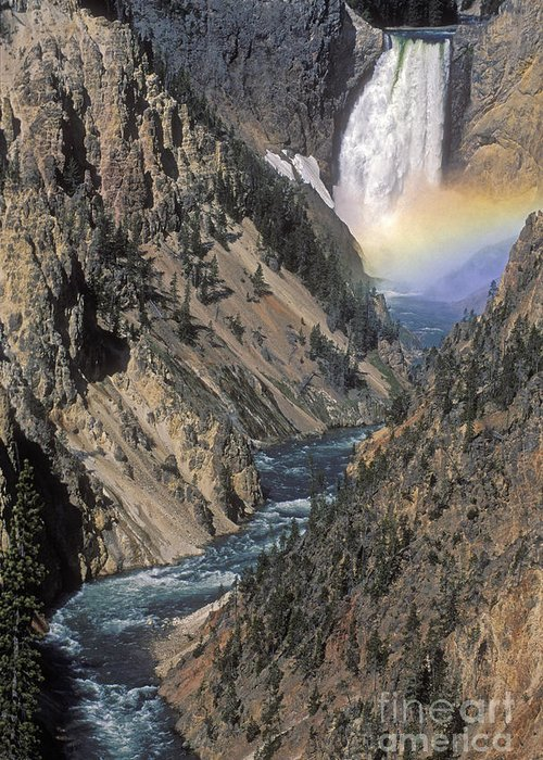 Yellowstone;waterfall; Greeting Card featuring the photograph Rainbow On The Lower Falls by Sandra Bronstein