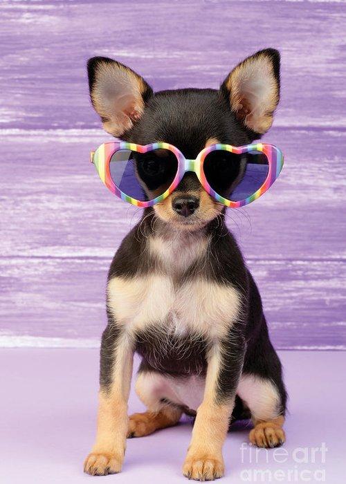 Sunglasses Greeting Card featuring the digital art Rainbow Sunglasses by Greg Cuddiford