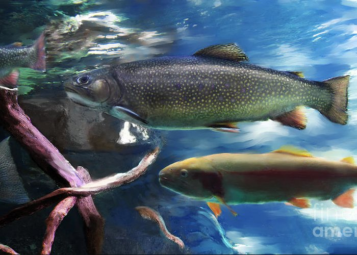 Trout Greeting Card featuring the digital art Rainbow Trout by Lisa Redfern