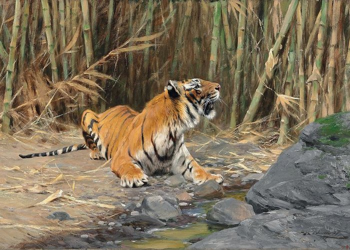 Tiger Greeting Card featuring the painting Raising His Voice by Wilhelm Kuhnert