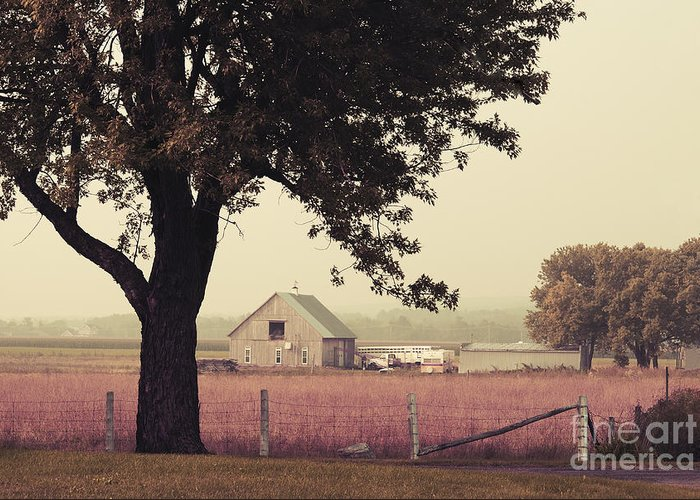 Autumn Greeting Card featuring the photograph Rawdon's Countrylife by Aimelle