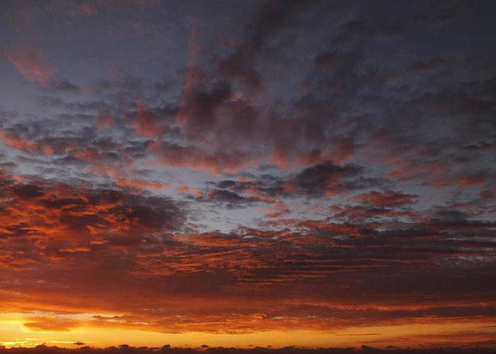 Red Orange Clouds Greeting Card featuring the photograph Reach For The Sky 11 by Mike McGlothlen