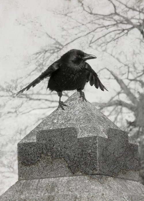 Gothicolors With Crows Greeting Cards