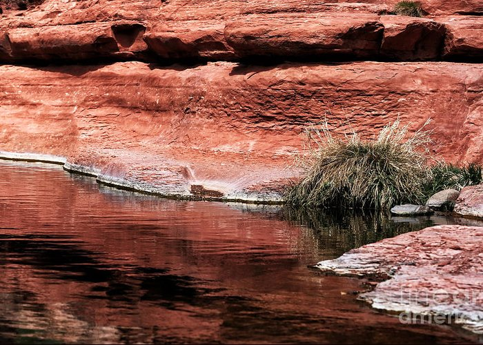 Red Creek Greeting Card featuring the photograph Red Creek by John Rizzuto
