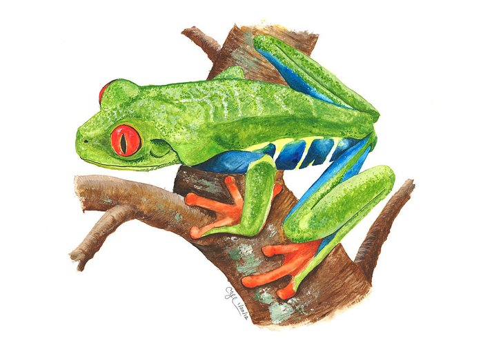 Treefrog Greeting Card featuring the painting Red-eyed Treefrog by Cindy Hitchcock