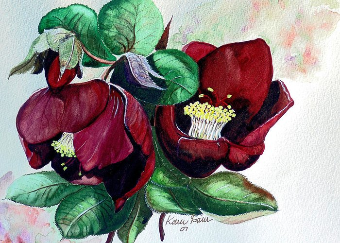 Red Helleborous Painting Flower Painting  Botanical Painting Watercolor Painting Original Painting Floral Painting Flower Painting Red Painting  Greeting Painting Greeting Card featuring the painting Red Helleborous by Karin Dawn Kelshall- Best