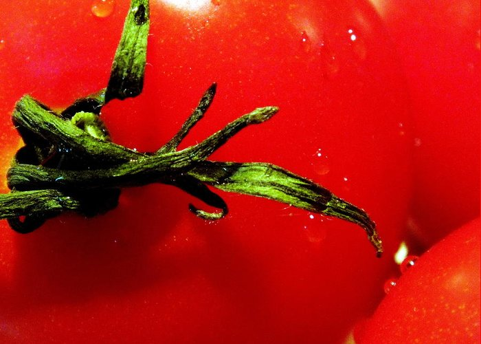 Tomato Greeting Card featuring the photograph Red Hot Tomato by Karen Wiles
