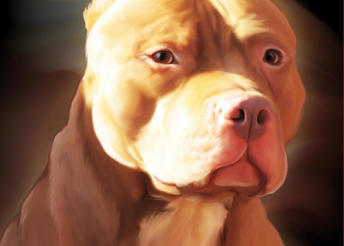 Spano Greeting Card featuring the painting Red Pit Bull By Spano by Michael Spano