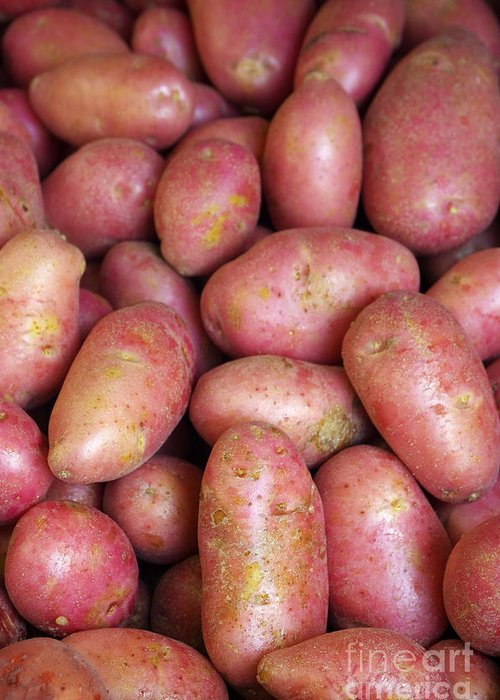 Farm Greeting Card featuring the photograph Red Potatoes by Carlos Caetano