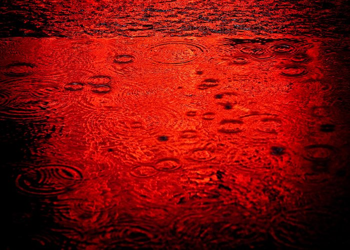 Raindrops Greeting Card featuring the photograph Red Rain by Dave Bowman