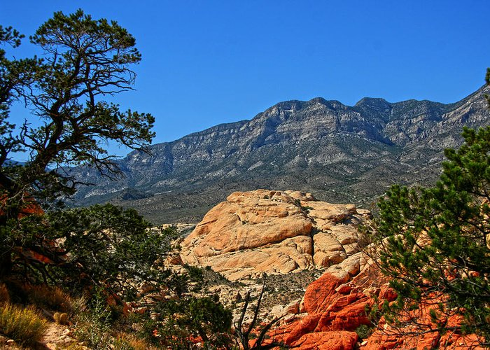 Red Rock Canyon Greeting Card featuring the photograph Red Rock Canyon 4 by Chris Brannen
