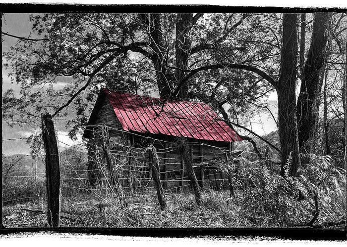 Old Barn Pen And Ink Greeting Cards