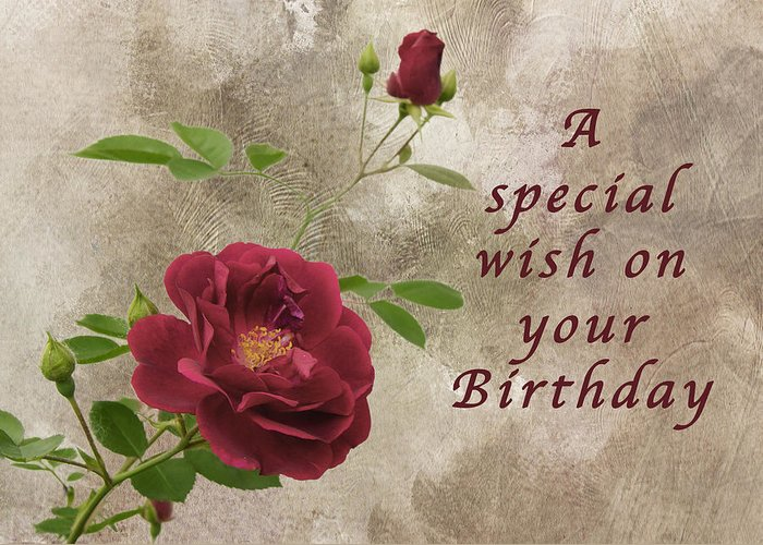Red Rose Birthday Wish Greeting Card For Sale By Michael Peychich