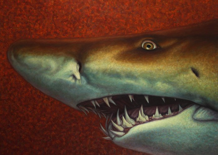 Shark Greeting Card featuring the painting Red Sea Shark by James W Johnson