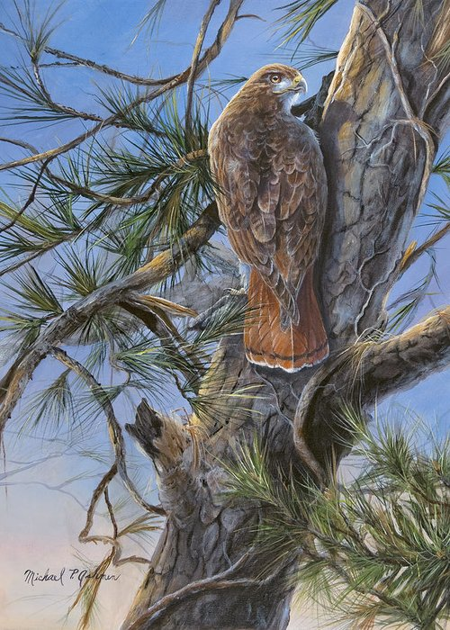 Red Tail Hawk Greeting Card featuring the painting Red Tail Hawk by Michael Ashmen