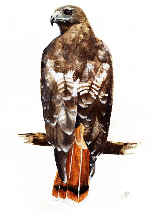 Red Tailed Hawk Greeting Card featuring the painting Red Tailed Hawk by Carlo Ghirardelli