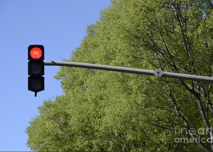 Guidance Greeting Card featuring the photograph Red Traffic Light By Trees by Sami Sarkis