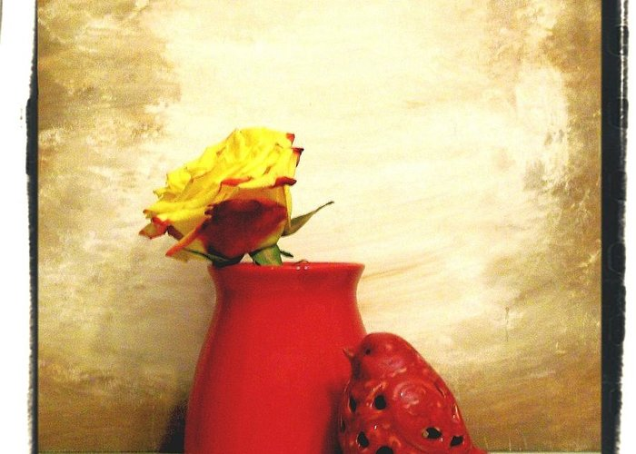 Photo Greeting Card featuring the photograph Red Vase Red Bird And Red Yellow Rose by Marsha Heiken