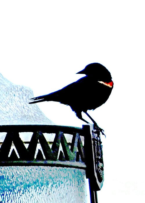 Bird Greeting Card featuring the digital art Red Wing Posed by Lizi Beard-Ward