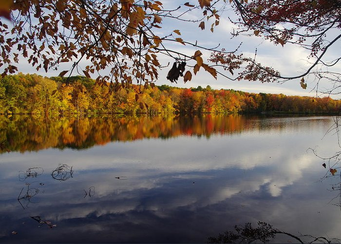 Autumn Greeting Card featuring the photograph Reflected Autumn Colors by Jf Halbrooks