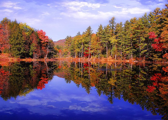 Autumn Roads Greeting Card featuring the photograph Reflected Autumn Lake by William Carroll