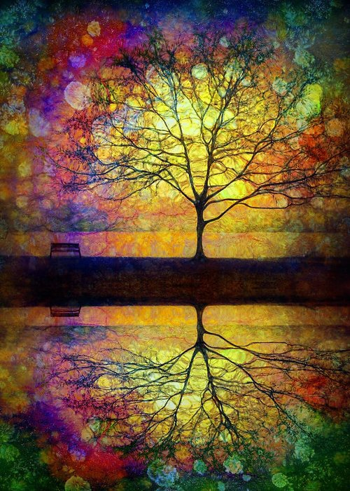 Trees Greeting Card featuring the photograph Reflected Dreams by Tara Turner