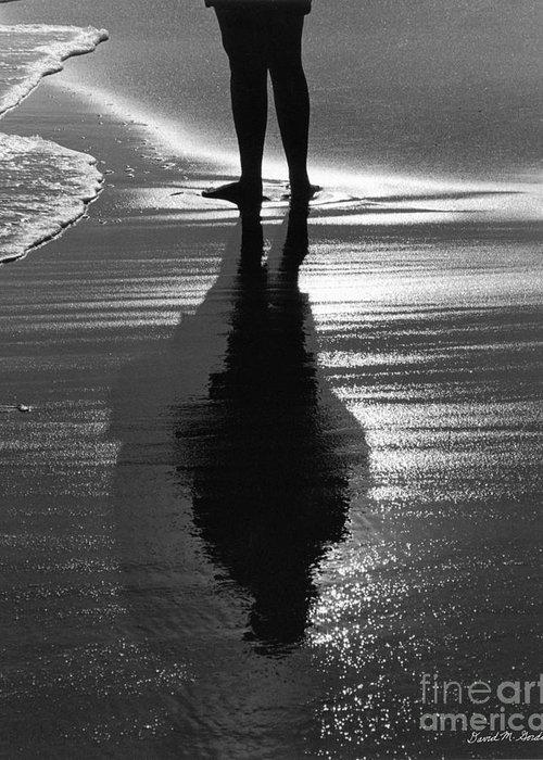 Reflection Greeting Card featuring the photograph Reflection - Horseneck Beach by David Gordon
