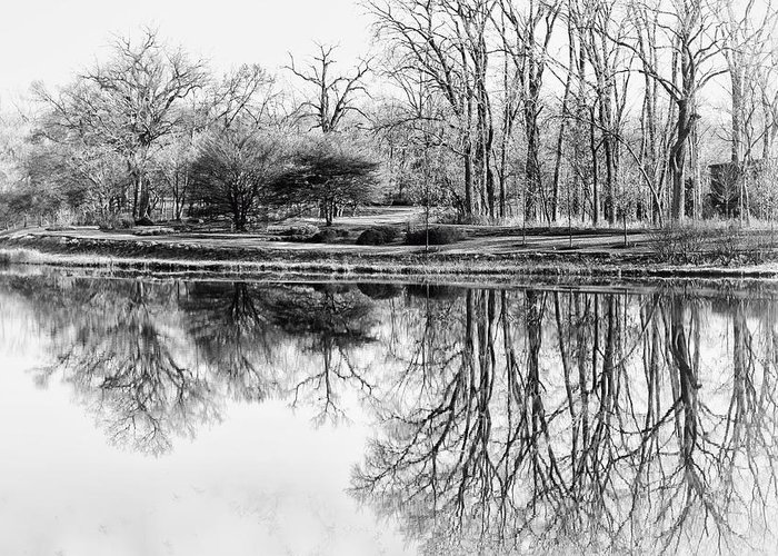 Landscape Greeting Card featuring the photograph Reflection In Black And White by Julie Palencia
