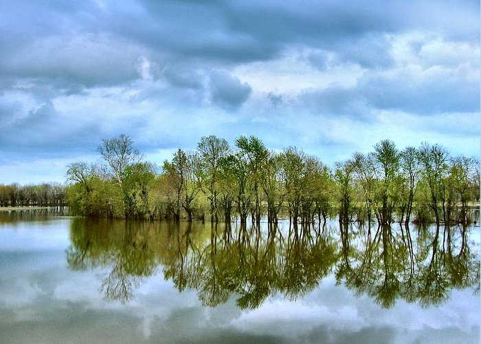River Flooding Greeting Cards
