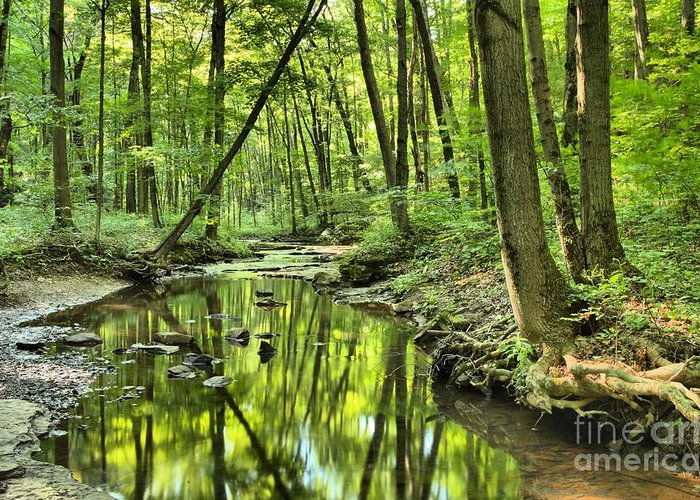 Hells Hollow Greeting Card featuring the photograph Reflections Of Tranquility by Adam Jewell