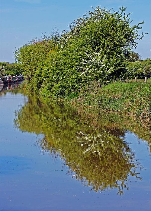 Oxford Canal Greeting Card featuring the photograph Reflections Of Trees by Tony Murtagh
