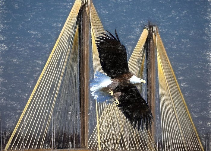 Bridges Greeting Card featuring the photograph Regal Eagle by John Freidenberg