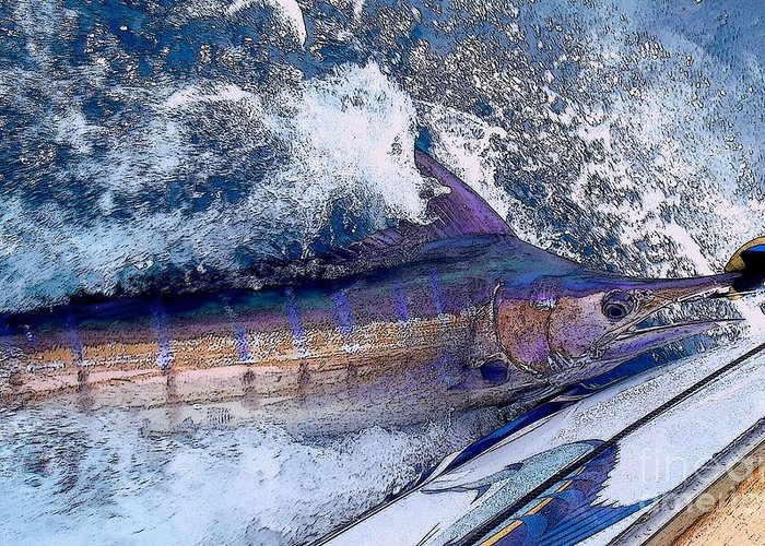 Striped Marlin Photographs Greeting Cards