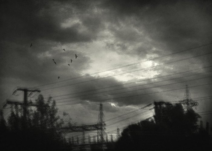 Electricity Wires Greeting Card featuring the photograph Remember by Taylan Apukovska