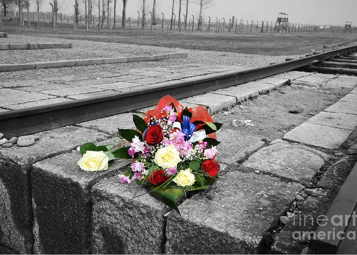 Auschwitz Greeting Card featuring the photograph Remembering The Painful Past by Randi Grace Nilsberg
