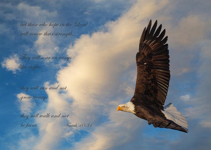 Scripture With Eagle Greeting Cards