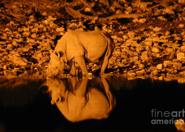 Rhino Greeting Card featuring the photograph Rhino Reflection by Alison Kennedy-Benson