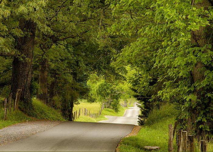 Cades Cove Greeting Card featuring the photograph Ribbon Road by Andrew Soundarajan